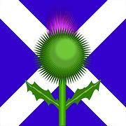 Scottish flag and Thistle