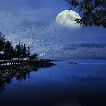 Song Story: Moonlight Mood