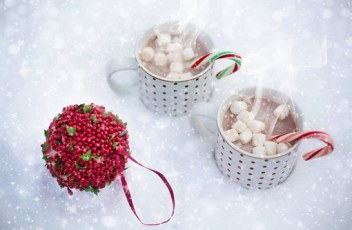 hot-chocolate-1068703__340