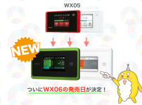 WiMAX WX06