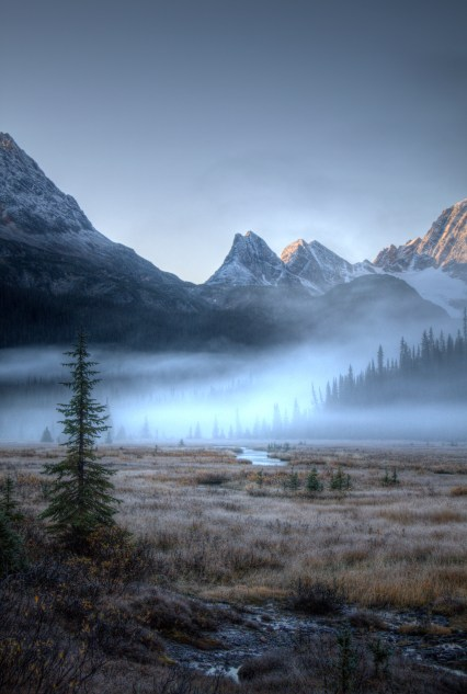 I waited for first light before I headed out. The sun was just starting to touch the peaks. I slipped twice on the sheen of ice that the dew had left over the rocks. Breaking into the meadow from the forest I discovered this moment of bliss. Fearful mist waiting to be chased away by the morning sun.