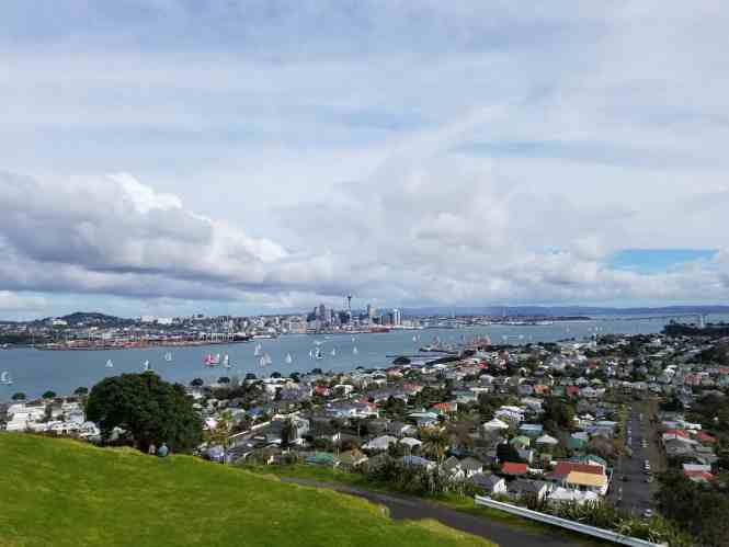 24 Hours in Auckland