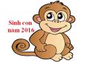 Một số tên mang lại vận mệnh tốt cho bé sinh năm Bính Thân 2016