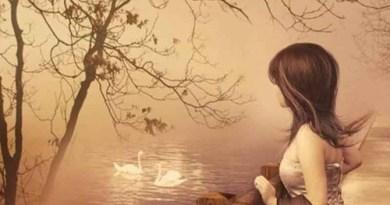 valentine của mẹ đơn thân