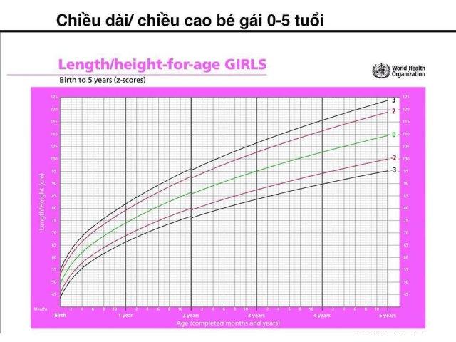 Các tiêu chuẩn chiều cao cân nặng của bé
