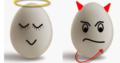Ảnh hưởng của trứng đến khả năng thụ thai