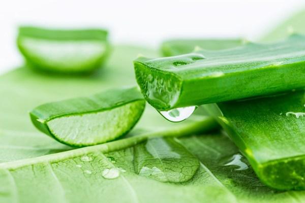 Những phương pháp trị nám da sau sinh từ thiên nhiên