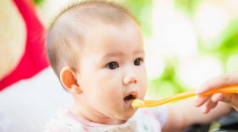 Thực đơn ăn dặm cho bé 6 tháng tuổi thời kỳ mới bắt đầu