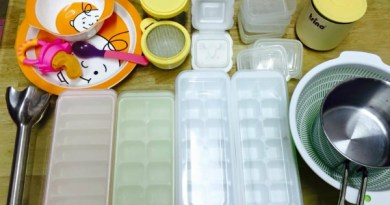 Cách chế biến và cất trữ đồ ăn dặm cho bé của mẹ Nhật