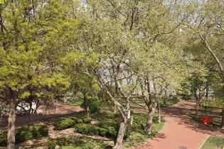 926 Castle Point Terrace - elysian park view