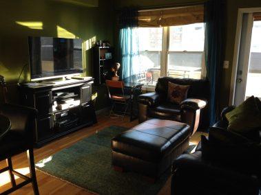 300 Hudson St #15 - living room