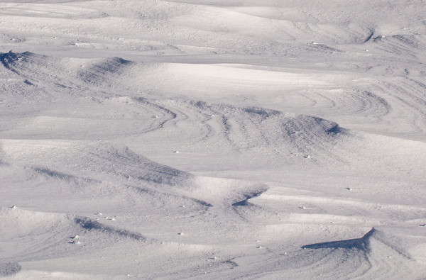 Wind on Snow