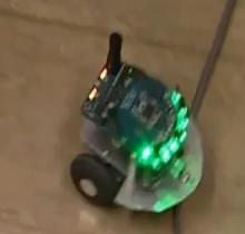 rat-brain-robot