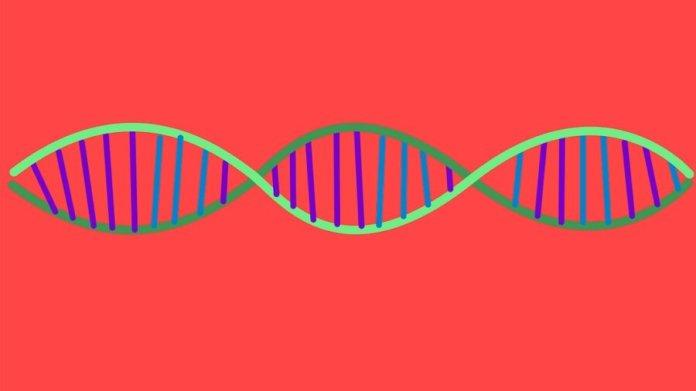 DNA data storage double helix CRISPR