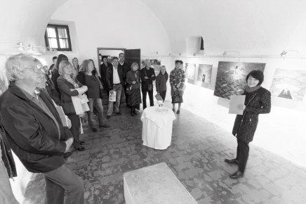 Pogled od zgoraj 2016 v Galeriji Šivčeva hiša v Radovljici