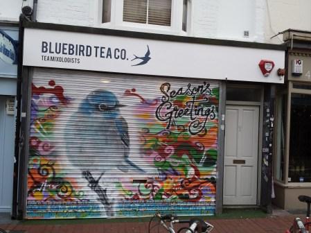 Christams shutter for Bluebird Tea co.