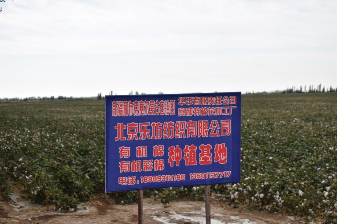 ホボクサルの提携綿花農場