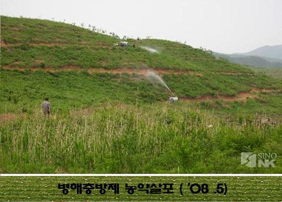 Pesticide being sprayed on the 100ha chestnut tree plantation nr. Mt. Geumgang. | Image: Park DongKyun