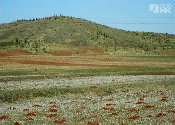 Degraded forest cover due to extreme over-use. | Image: Hans Seidel Foundation