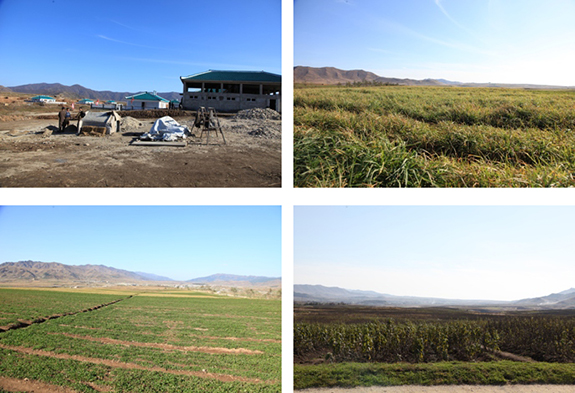 Views of the grasslands | Images: Rodong Sinmun