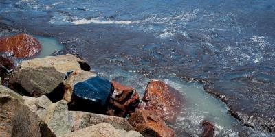 Bolsonaro diz que governo tem suspeita sobre origem de petróleo nas praias do Nordeste