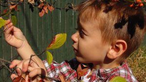 enfant imparfait curieux s'instruire autrement
