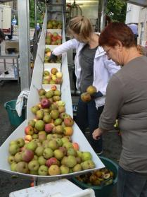 2010-09-24-fruitpers_03