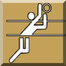 volleybal-logo