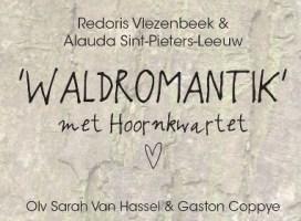 2013-09-04-waldromantik