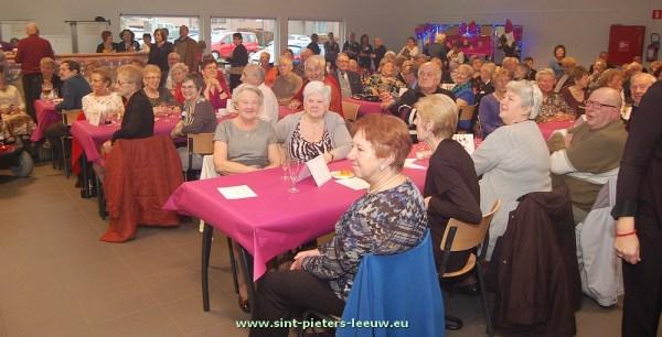 2014-01-16-nieuwjaarsbal-dienstencentra_01