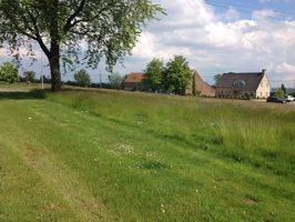 2014-05-14-hooilandbeheer-02