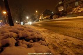2014-12-27-sneeuw-Rink-Leeuw