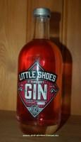 2015-08-12-Little-Shoes-Gin_Schoentjes