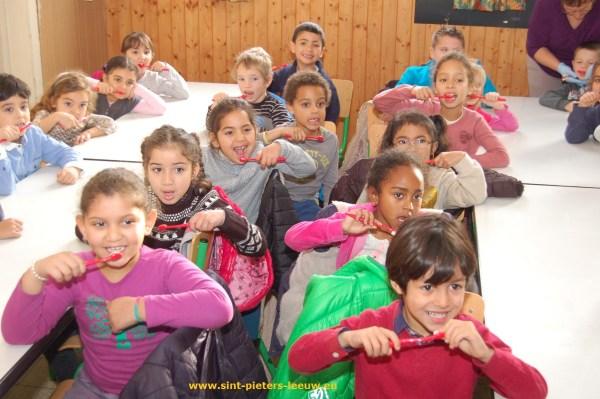de klasjes 1a en 1b van de Vrije Basisschool Jan Ruusbroec oefenen het tanden poetsen