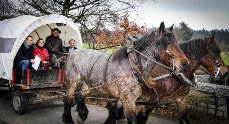 2016-12-12-trekpaard-provincie