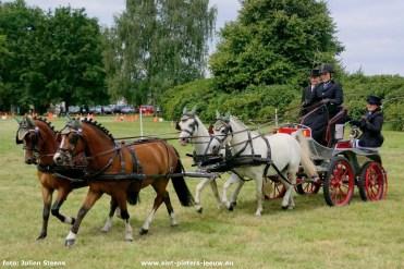 2017-07-29-dressuurwedstrijd-Vlezenbeek_04