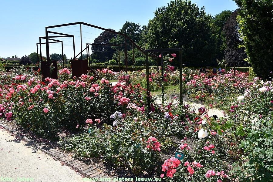Rosengarten Coloma - Ein flämischer Rosengarten in Weltformat!