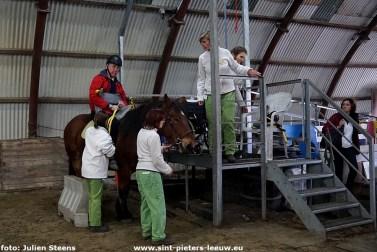 2018-11-12-Jade_hippo-therapiepaard_Revalidatieziekenhuis_Inkendaal (25)