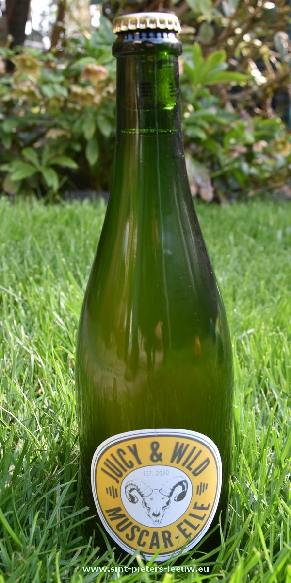 Muscar-Elle van brouwerij Lambiek Fabriek