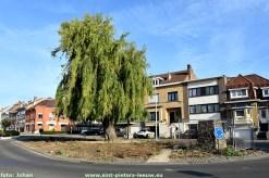2020-05-21- rotonde Koning Albertplein