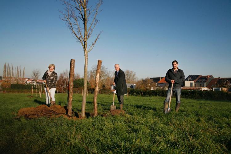 2020-11-28-natuurpark-aan-de-Zuunbeek_01
