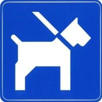 2020-12-15-hond-aan-de-leiband