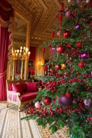 A regal tree decorated to enhance it's surroundings.