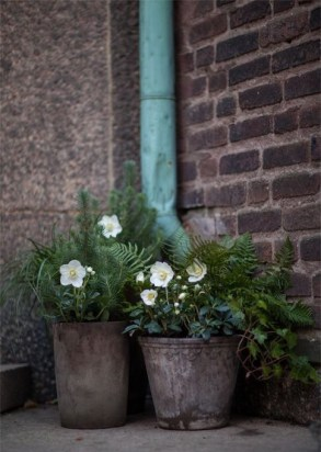 Garden containers placed in a dull dark corner