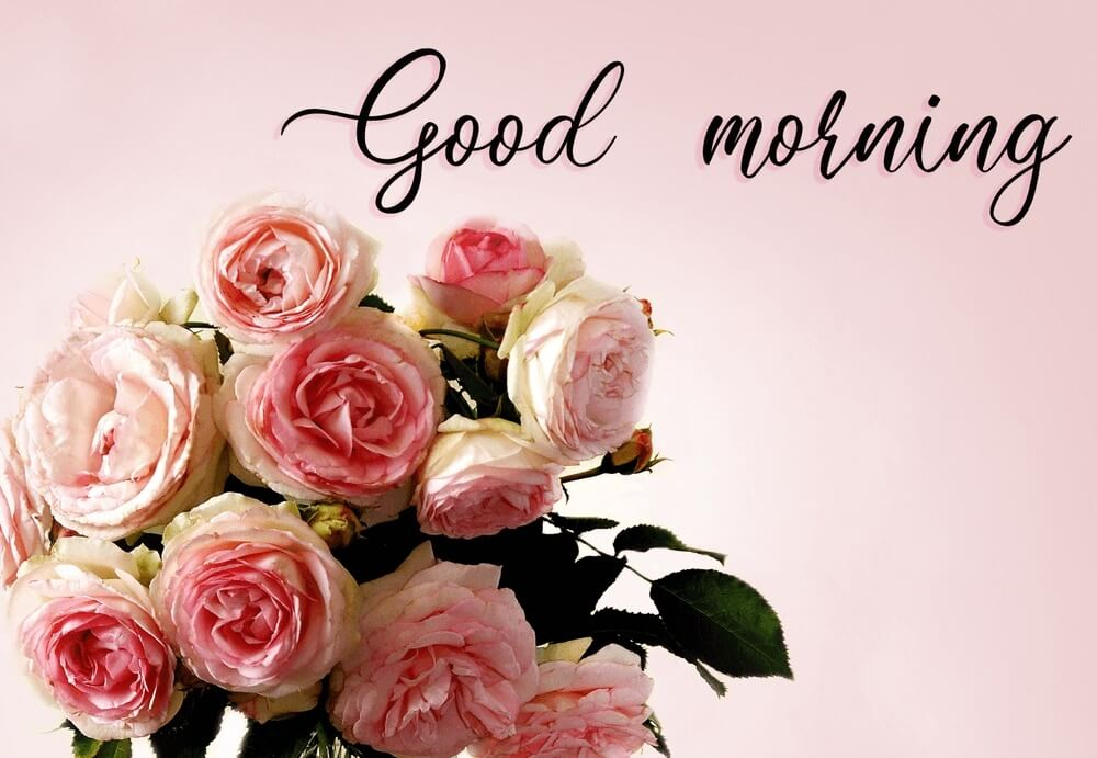 beautiful good morning images with  bouquet of pink roses in a vase