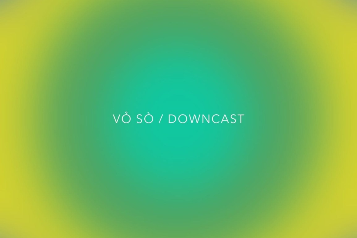 Vỏ Sò - Downcast