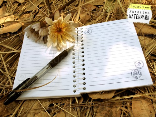 Girly notebook on foliage blanket