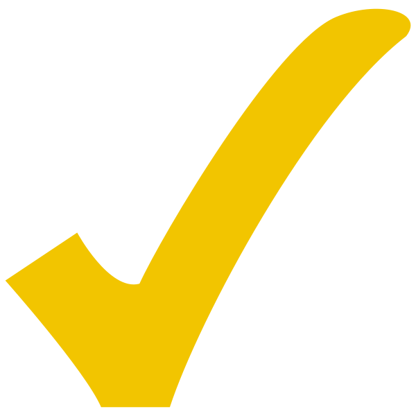 600px-Yellow_check.svg
