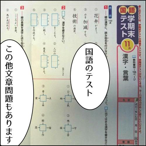 ポピーの国語漢字テストの写真