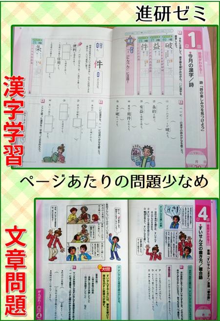 進研ゼミのメイン教材国語のページの写真